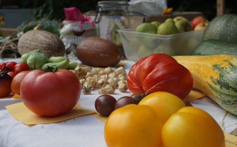 Feedbackrunde zur Obst- und Gemüsetauschbörse 2019